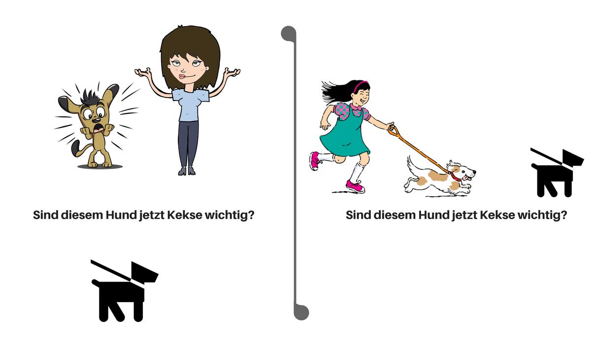 Click für Blick Hundebegegnungen