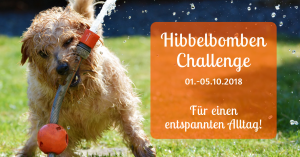Hibbel bumben Challenge - Ruhetraining für Hunde