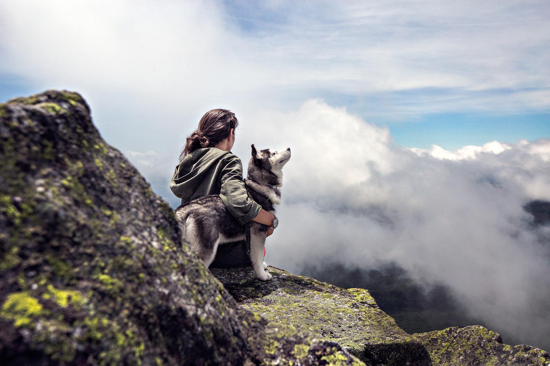 Bedürfnisse Deines Hundes berücksichtigen
