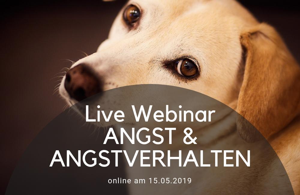 Angst & Angstverhalten - Online Webinar