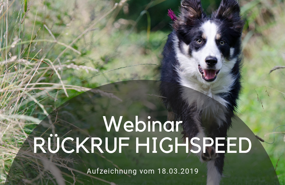 Rpckruftraining Highspeed - Online Webinar