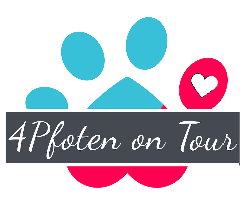 4Pfoten on Tour - Hundetraining Kassel & online