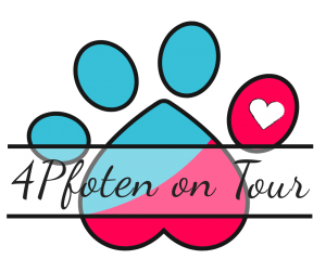 4Pfoten on Tour - Hundetraining Kassel