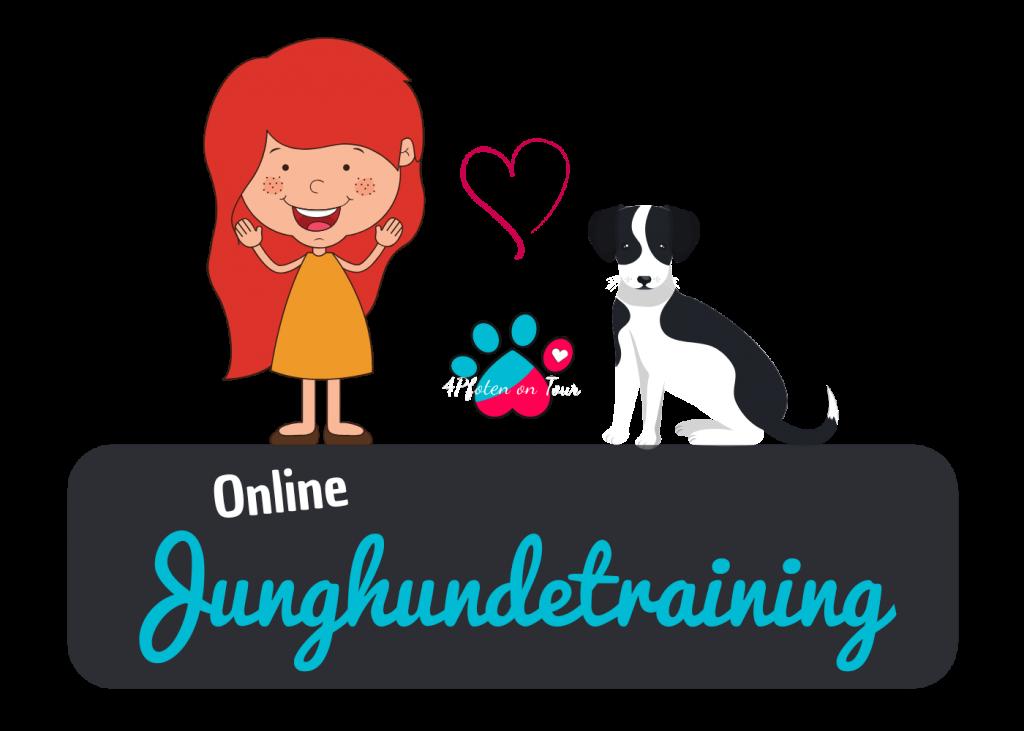 Junghundetraining online - Rückruf, Hundebegegnungen, Entspannung & Co