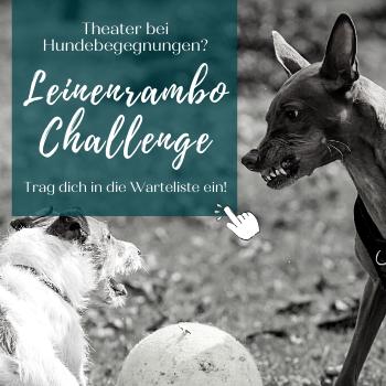 Leinenrambo Challenge - Warteliste