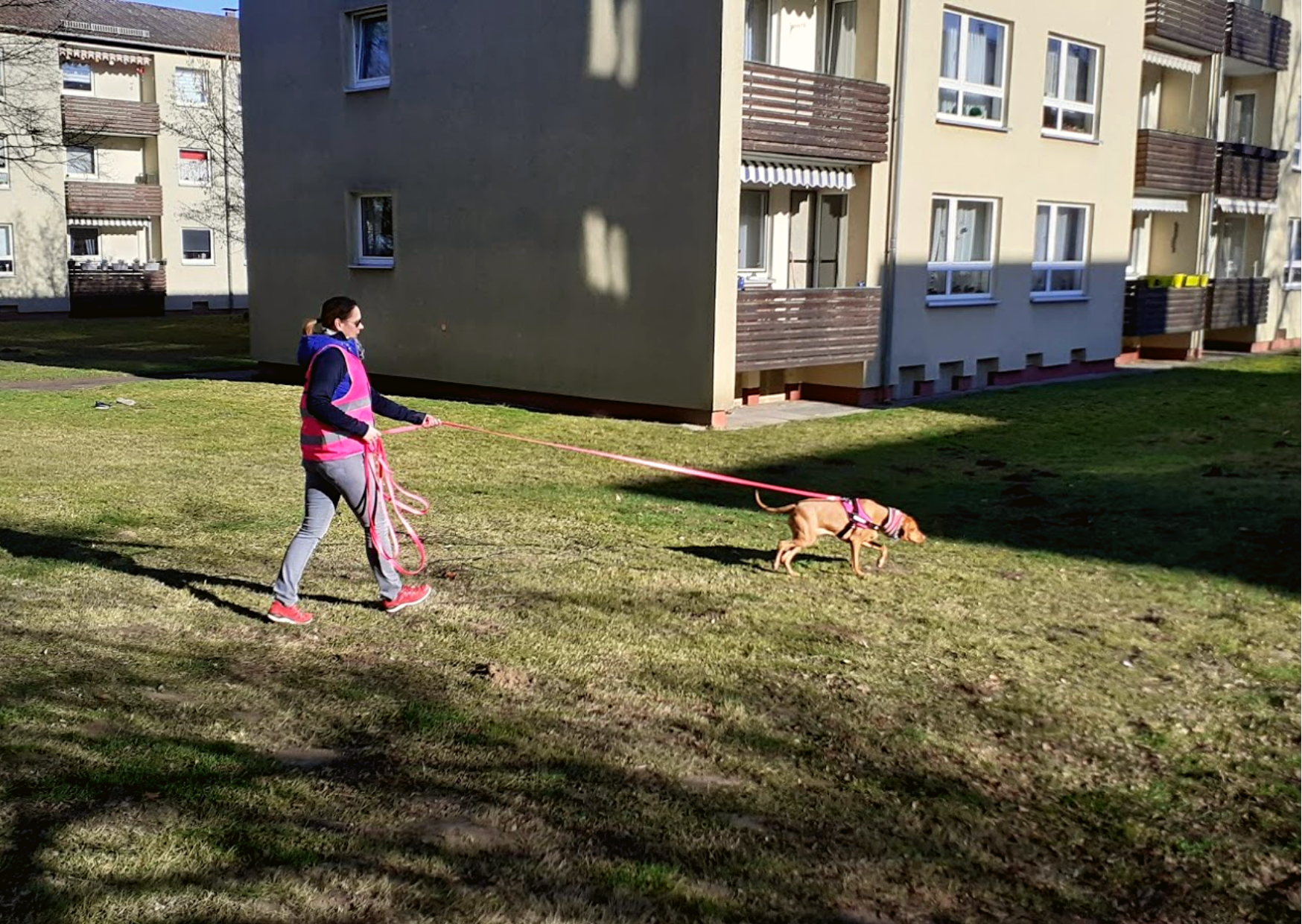 Mantrailing Baunatal Kassel