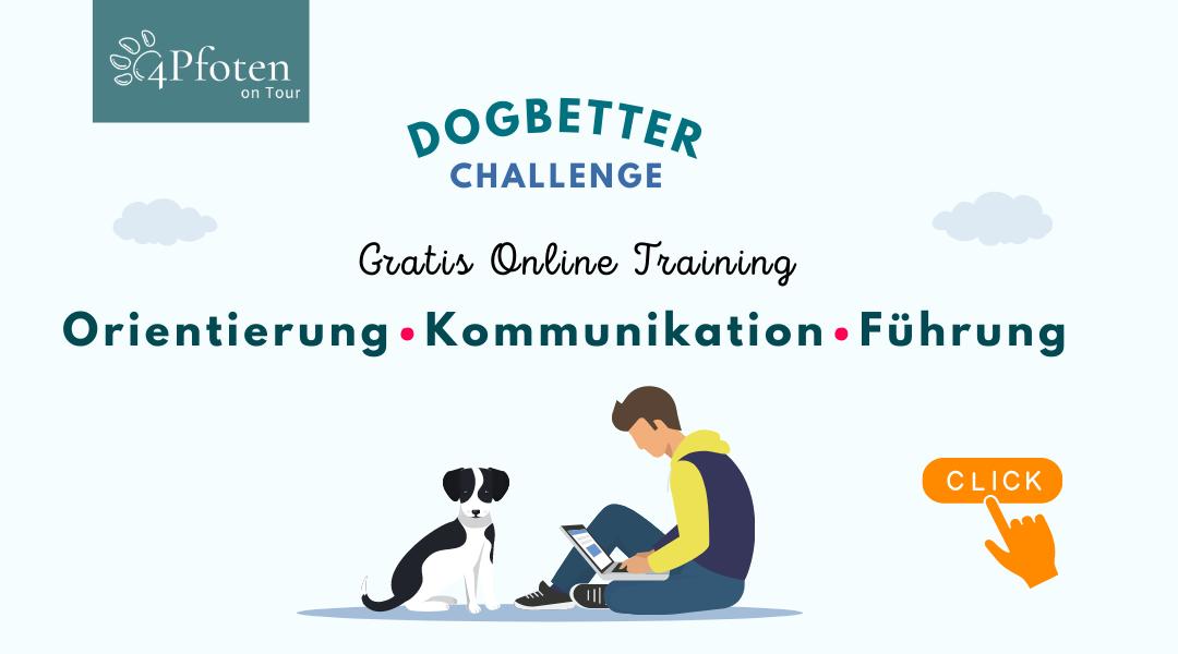 Gratis Online Training: Orientierung - Kommunikation - Führung